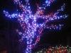center_tree
