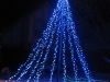 blue_mega_tree